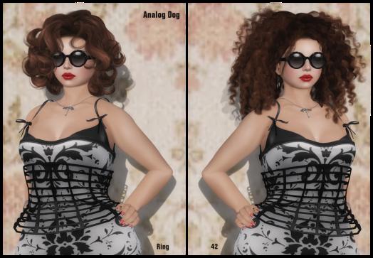 Analog Dog 2014 Hair Fair